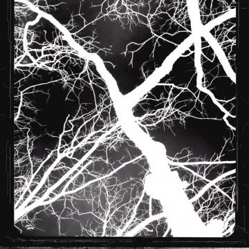 LIGHTNING NEVER STRIKES TWICE - 8x10 fine art print