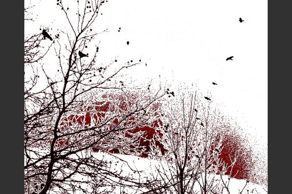 Rising Sun-8x10 Fine Art Print